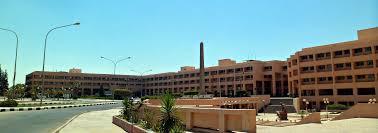 University of Sadat City - Wikipedia