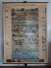 Vintage School Pull Down Charts Vintage School Wall Map Pull Down Chart Of The By