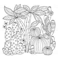 ベクトルの着色のページ塗り絵のページのための白い背景かわいいサボテンのリニア