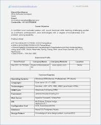 Sample Resume For Software Engineer With 2 Years Experience 0 1 Year Experience Resume Format 2 Resume Format Sample Resume