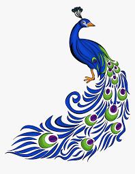 Assignment Design Images Transparent Peacock Feather Clip Art Border Design For