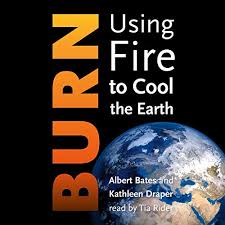 Burn by Albert Bates, Kathleen Draper | Audiobook | Audible.com