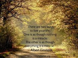 Appreciating Beauty Quotes Best of Quote By Albert Einstein Inspiration Miracle VIAstrengths