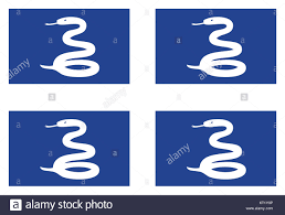 National flag of Martinique Stock Photo ...