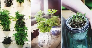 46 indoor herb garden ideas that will