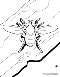 Bee coloring pages - Hellokids.com