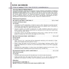 Resume Forms Online Enchanting Resume Template Online Simple Resume Examples For Jobs
