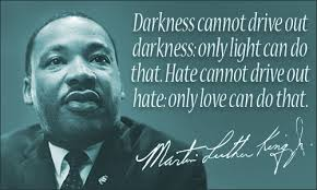 Martin Luther King Quote Delectable Martin Luther King Jr Quotes