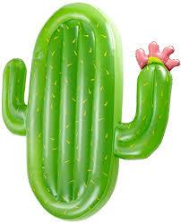 Vickea Leisure Giant Inflatable Cactus Pool Float ... - Amazon.com