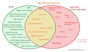 Food And Carbohydrates Chart Strict Keto Vs Low Carb Food Diagram Keto Plates