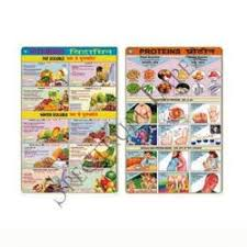 Chart Of Different Food Items Paper Food And Nutrition Chart Spectrum Impex Id 12079393797