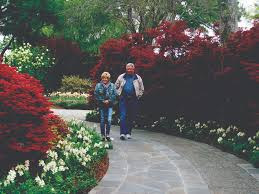 get your groove on at dallas arboretum and botanical gardens