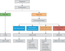Copd Guidelines Chart Precision Medicine In Copd Where Are We And Where Do We