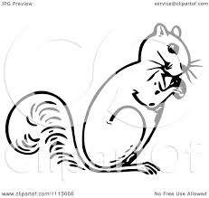 nut clipart black and white. clipart vintage black and white squirrel eating a nut - royalty free vector illustration by prawny i