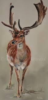 deer paintings on canvas best photos water alliance