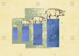 Pig Growth Chart Pigs On A Growth Chart Stock Photo Offset