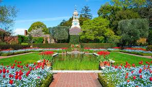 flowers abound at filoli and the mill rose inn