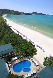 patong bay garden hotel reviews. all photos (370) patong bay garden hotel reviews e