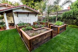 raised bed vegetable gardentraditional landscape san francisco