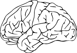 Small Picture Great Brain Coloring Page 56 With Additional Gallery Coloring