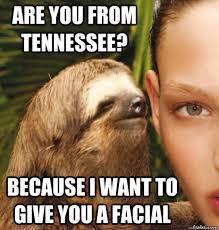 Memes Vault Rape Sloth Memes – Dragon via Relatably.com