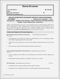 Resume Examples Merchandising Position Fresh Rn Resume Sample Unique