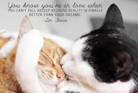 Image result for PERFECT LOVE QUOTES