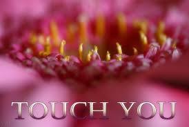 Blume Sehnsucht Romantisch Grußkarten E Cards Postkarten Sehnsucht
