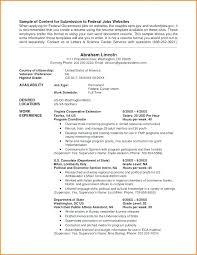 Usa Resume Builder Emelcotest Com