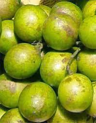 Small Roundish Yellow Fruits