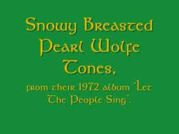 Snowy Breasted Pearl - Wolfe Tones - YouTube