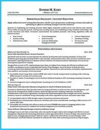 plain text resume examples