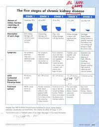 Kidney Disease Stages Chart 5 Stages Of Kidney Disease Kidney Disease Stages Kidney