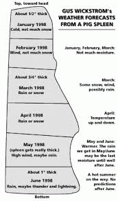Weather Prediction Chart Pig Spleen Weather Prediction Chart Old Farmers Almanac