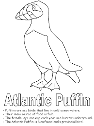 Sea Bird Coloring Page With Bird Coloring Pages Free Printable