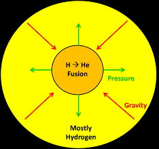 below is a diagram of how nuclear fusion occurs in the core of a main sequence star it also shows how the pressure from this nuclear fusion is balanced by