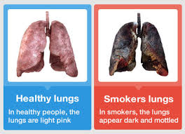 does smoking make your lungs stronger