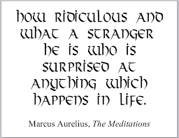 The Stranger Quotes Beauteous Marcus Aurelius Quotes How Ridiculous And What A Stranger Marcus