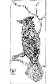 Bird Patterns Birds Adult Coloring Pages
