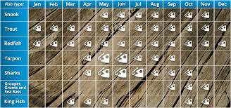 Florida Fishing Seasons Chart Seasonal Chart Tampa Bay Fishing Charter Services