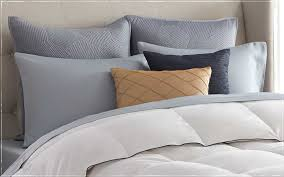 standard euro pillow size wonderful bed sizes guide pacific coast bedding decorating ideas 13