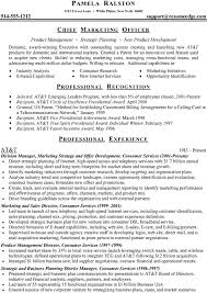 Sample Resume With Accomplishments Section Gallery Creawizard Com