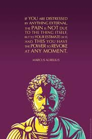 Stoicism Quotes Gorgeous Feeling Pain Understand This MoveMe Quotes