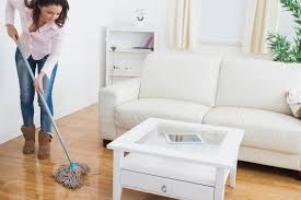 Best Kitchen Floor Mop Best Tips And Mop For Wood Floors Homesfeed
