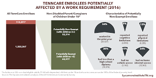 Obstacles To Work Among Tenncare Enrollees Likely Affected