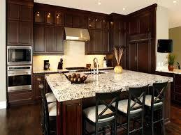 Dark Wood Cabinets Kitchen Fair Decor D Kitchen Designs Kitchen Ideas