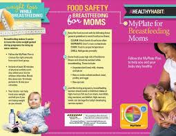 baby pamphlets myplate for breastfeeding moms tri fold brochures