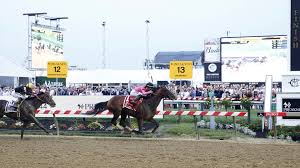 Preakness Stakes 2019 Payouts Win Place Show Results For
