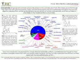Rick Simpson Oil Dosage Chart Rick Simpson Oil Autism Cbd Cannabis And Autism An