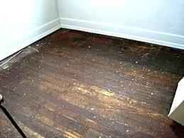 tile glue remover home depot tile remover tile adhesive remover stylist design wood floor glue removing